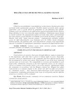 belçika ceza hukukunda çalışma cezası