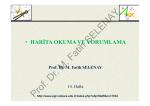 Prof. Dr. M. Fatih SELENAY