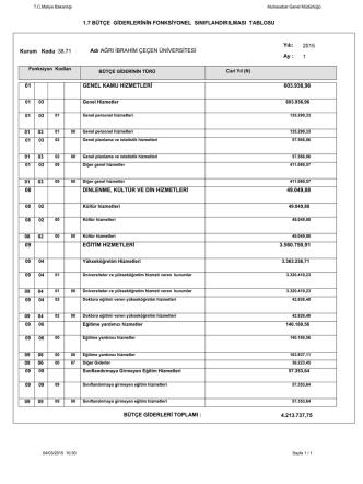 1.7 bütçe giderlerinin fonksiyonel sınıflandırılması tablosu 01 08 09