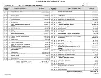 1.1 Bütçe Uygulama Sonuçları Tablosu