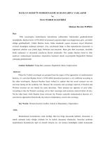 baykan sezer`in modernleşme kuramlarına yaklaşımı ve max weber