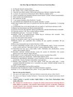 Basketbol Kuralları 2015 Öğrenci