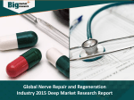Global Nerve Repair and Regeneration Industry 2015 Deep Market Research Report