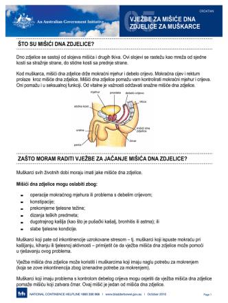 05vježbe za mišiće dna zdjelice za muškarce