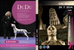 katalog 24.7 - 4 Summer Night Shows
