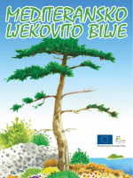 Projekt financira Europska Unija