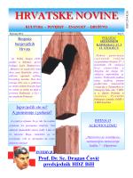 Hrvatske novine – br. 6 - Hrvatska Nezavisna Lista