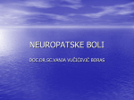 NEUROPATSKE BOLI