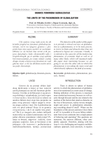 granice fenomena globalizacije