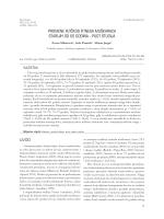 PUNI TEKST (.pdf)