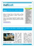 1. Upoznajmo vrste kitova i morskih kornjača u