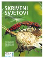 Prilog iz Novog Lista - Nacionalni park Sjeverni Velebit