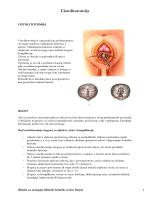 Cistolitotomija - Klinika za urologiju KBC Osijek