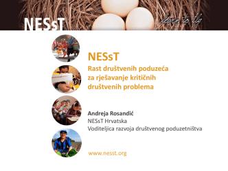 Andreja Rosandić, NESsT Croatia