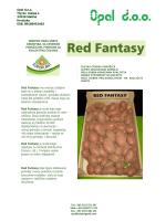 Red Fantasy ima srednje zahtjeve kada su u pitanju zemljište i