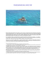 Hrvatski jadranski otoci, otočići i hridi