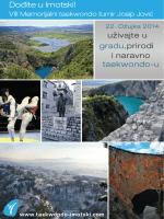 josip jović 2014 - Taekwondo Imotski