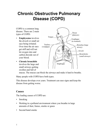 Chronic Obstructive Pulmonary Disease (COPD) - Bosnian