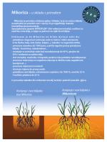 Mikoriza – u skladu s prirodom - Bio