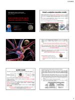Uvod u umjetne neuralne mreže