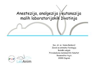 Anestezija, analgezija i eutanazija malih laboratorijskih