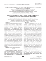 vaskulitisi malih krvnih sudova bubrega: etiopatogeneza