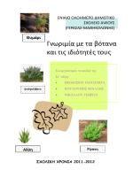 Γνωριμία με τα βότανα και τις ιδιότητές τους