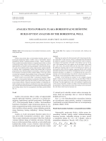 analiza testa porasta tlaka horizontalne bušotine build