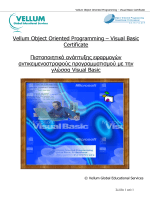 Visual Basic - Vellum Global Educational Services