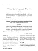 Endogenous Gas Gangrene after Laparoscopic Cholecystectomy