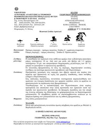 Ampeli.pdf - Amfissapress
