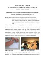 Link na PDF izvještaj - Akademija likovnih umjetnosti