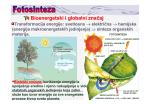 Fotosinteza - Biolozi 2011/12