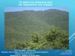 Τα δάση του Ολύμπου από την Αρχαιότητα έως Σήμερα