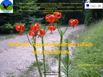 1.1 - Κάρλας - Μαυροβουνίου - Κεφαλόβρυσου