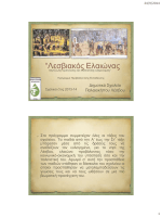 """""""Λεσβιακός Ελαιώνας - Κέντρο Περιβαλλοντικής Εκπαίδευσης"""
