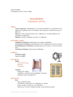 Ιουδαϊσμός. Διάγραμμα μελέτης - 2ο Πρότυπο Πειραματικό Γενικό