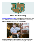 J&J Exterminating New Orleans : Pest Control in New Orleans