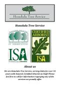 Honolulu Tree Services, HI (808-561-1000)