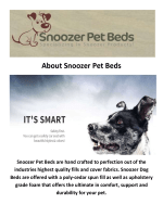 Snoozer Pet Beds : Snoozer Orthopedic Dog Bed
