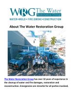 The Water Restoration Group Mold Remediation Miami