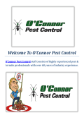 O'Connor Pest Control : Termite Inspections in Dublin, CA