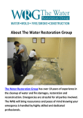 The Water Restoration Group Mold Removal Miami