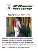 O'Connor Pest Control - Termite Control Dublin