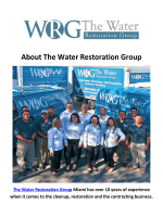 The Water Restoration Group - Water Damage and Mold Remediation in Miami