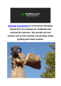 Honolulu Tree Service | Top Rated Local Tree Service