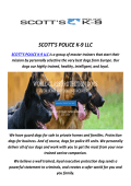 SCOTT'S Police Trained German Shepherds For Sale