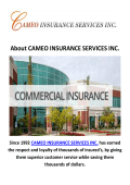 Commercial Insurance Service in Inglewood | CAMEO INSURANCE