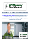 O'Connor Pest Control Service in Ventura, CA