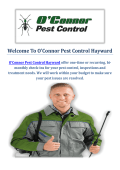 O'Connor Pest Control Company in Hayward, CA